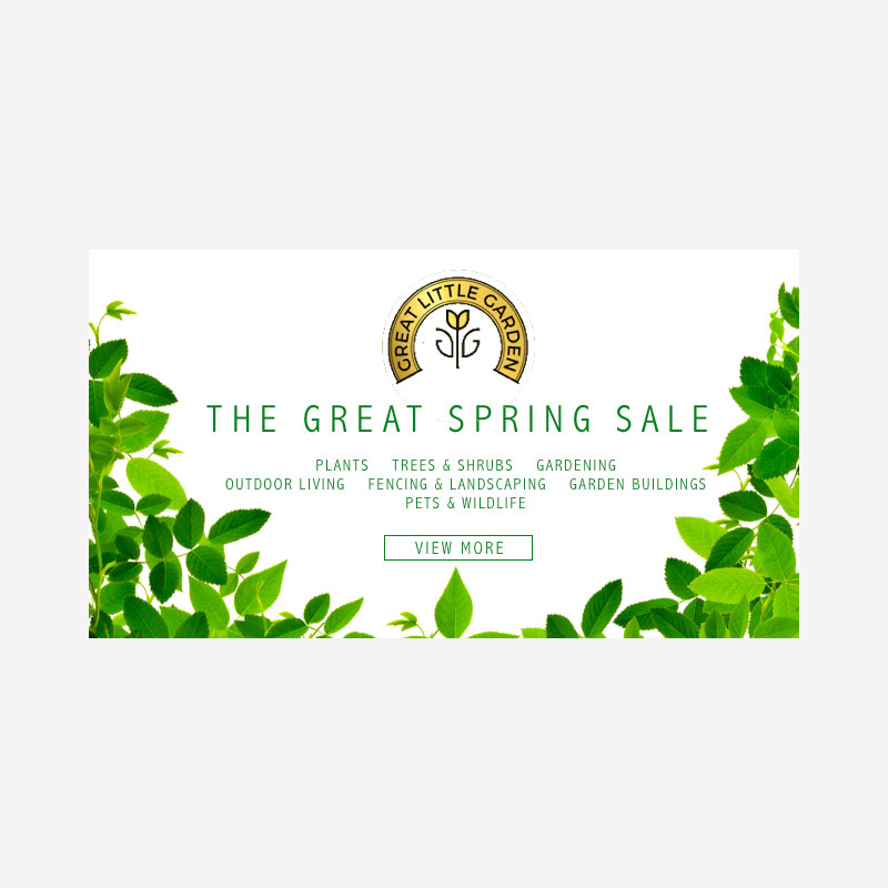 Great Little Garden Email Banner